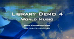 Library Demo 4